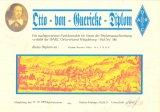Ozzo von Guericke Diplom